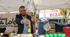 Pamukova Ayva ve Organik Ürünler festivalinden görüntüler