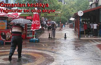 Pamukova da Otuz Dakika yağmur yağdı. işte manzara bu.