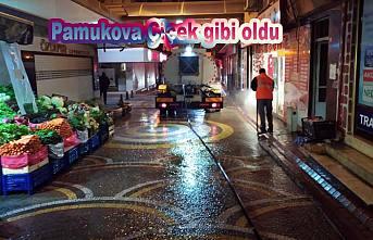 Pamukova Sokaklarında çiçekler açtı.