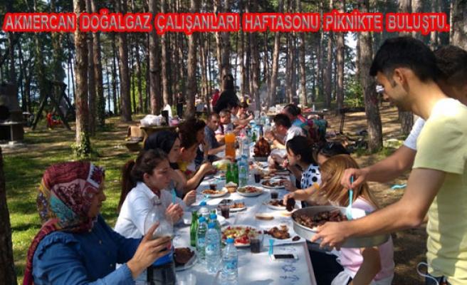 Akmercan Çalışanları Hafta sonu piknik yaptılar.