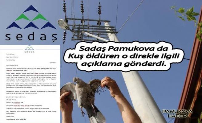 Sedaş kuşları öldüren direk haberi ile ilgili açıklama gönderdi.