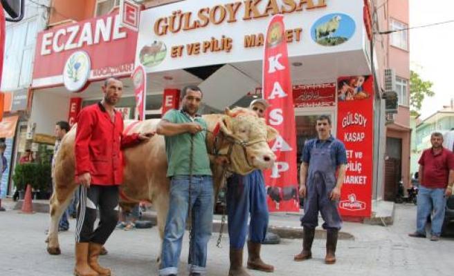 Gülsoy Kasap müşterileri için Haydar'ı kurban etti.
