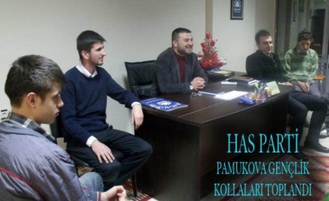 Has Parti Pamukova Gençlik Kolları çalışmalara start verdi.