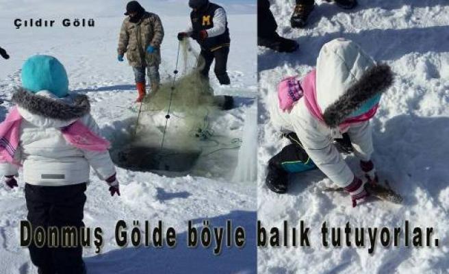 Kars Çıldır Gölünde her şey dondu.