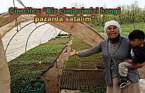 Çim (Fide) yetiştiricilerine satış izni çıktı