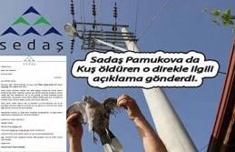 Sedaş kuşları öldüren direk haberi ile ilgili...