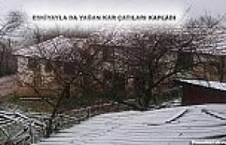 Pamukova da Yükseklere Kar, ilçe merkezine yağmur...