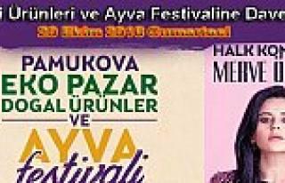 20 Ekimde İkincisi Yapılacak Pamukova Festivali...