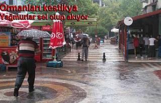 Pamukova da Otuz Dakika yağmur yağdı. işte manzara...
