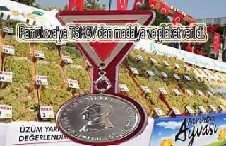 Pamukova'ya TSKGV'dan bir plaket birde madalya...