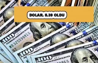 Asya piyasaları açıldı, dolar 8,39'a kadar...