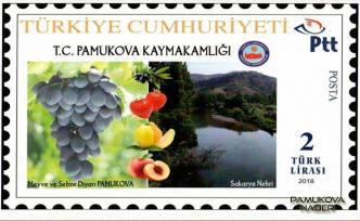 Kaymakamlık Pamukova'ya Özel Pul bastırdı.