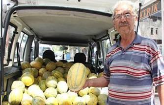 Pamukov'nin sulu ve tatlı kavunu pazarda