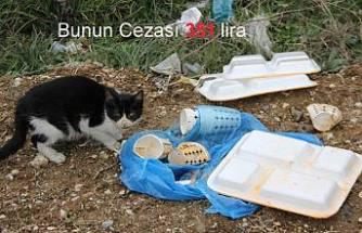 Pamukova'da çevreyi kirletenlere ceza yok mu?