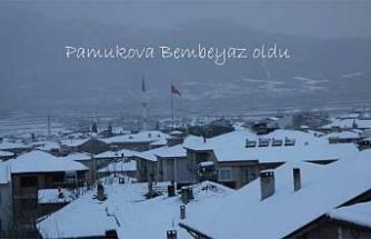 Pamukova'ya Doya Doya kar yağdı.