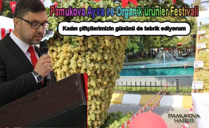 Pamukova Festivaline büyük ilgi oldu.