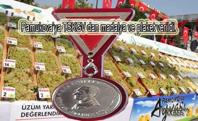 Pamukova'ya TSKGV'dan bir plaket birde madalya geldi.