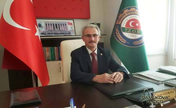 Çiftçilere İznik'de Zeytin Konferansı verilecek.
