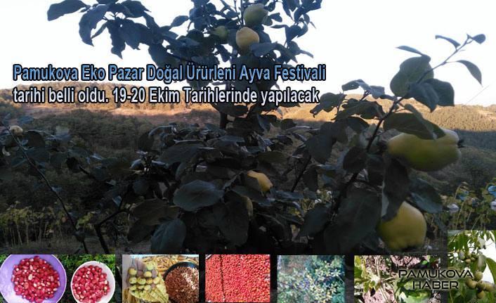 Pamukova Eko Pazar Doğal Ürünleri Festivaline hazırlanıyor.